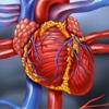 Prevencija srčanog zastoja - Skorovi ranog upozorenja