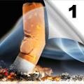 Pušenje - Razvoj zavisnosti, efekti na zdravlje i mogućnosti prevencije (1)