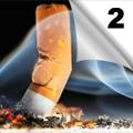 Pušenje - Razvoj zavisnosti, efekti na zdravlje i mogućnosti prevencije (2)