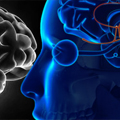 Inicijalna dijagnostika i lečenje poremećaja funkcije hormona hipofize