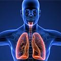 Savremeni principi uspostavljanja i održavanja disajnog puta i disanja