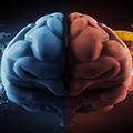 Šta zdravstveni radnik treba da zna o emocionalnoj inteligenciji?