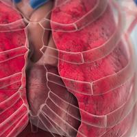 Akutni koronarni sindrom - Laboratorijska dijagnostika