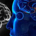 Poremećaji funkcije hormona hipofize - Inicijalni tretman