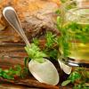 Osnovi tradicionalne medicine