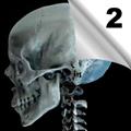 Maksilofacijalne povrede (2)