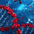 Onkogeneza