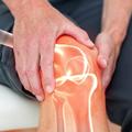 Anatomija i biomehanika zgloba kolena