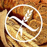 Necelijačna preosetljivost na gluten / pšenicu