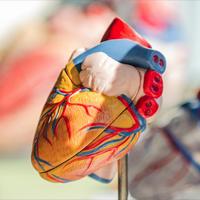 Savremeni pristup u tretmanu srčane insuficijencije